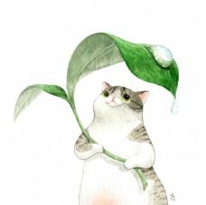 水彩猫 卡通