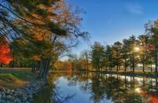 湖边湿地景观