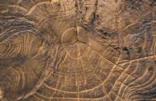 木纹 年轮