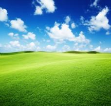 高清蓝天白云草地背景