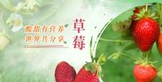 草莓促销展板
