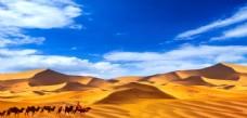 藍天白云 沙漠駱駝 西域