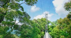 文莱淡布隆国家公园