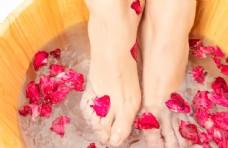 洗腳玫瑰花瓣保健養生背景素材