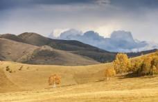 秋天的草原