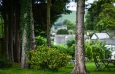英格兰乡村花园