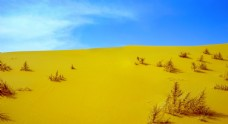 内蒙古响沙湾沙漠景观