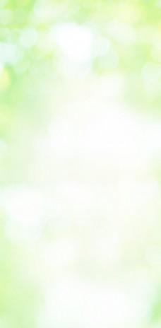 浅绿色背景