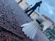 孤独的羽毛球