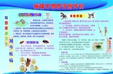 害虫预防知识