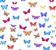 彩色  蝴蝶