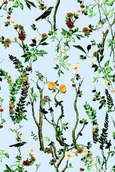 花卉 动物 树枝