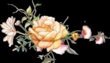 手绘花 玫瑰花 大牌花 乱花