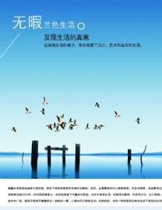 房地产高档宣传文案创意海边飞鸟