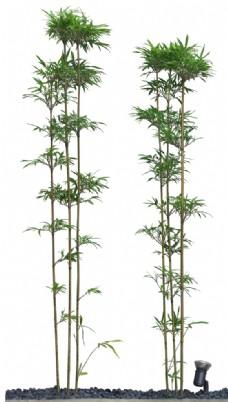 免扣植物树木素材