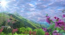 花瓣飘落视频背景