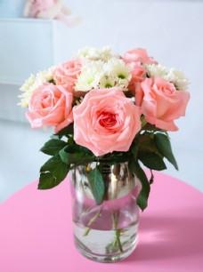 玫瑰鲜花拍摄