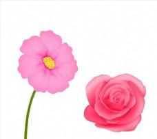 现实粉红色花朵