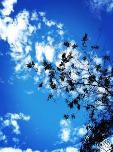 風景 藍天 旅游