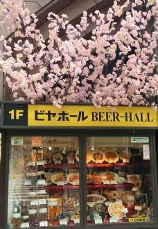 日本实拍橱窗参考图