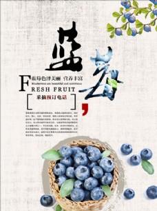藍莓 藍莓海報