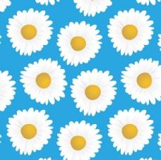 花朵小雏菊图案 底纹矢量