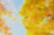 黄色潮流抽象