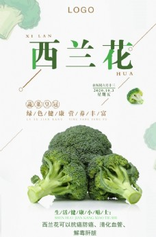 极简清新西兰花蔬菜促销海报