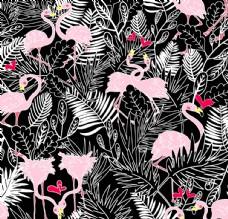 热带叶子火烈鸟