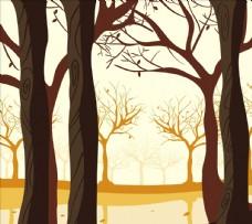 秋季森林图片