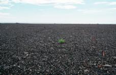 地面砂石简约留白背景素材