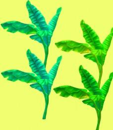高清手绘椰树图片