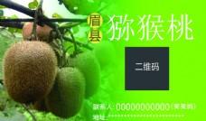 獼猴桃名片圖片