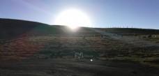 草原牧场日落风景图片