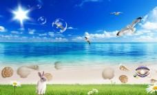 海边海滩贝壳风景背景墙图片