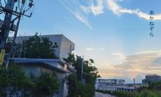 唯美日系风图片