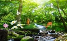 树林小鹿麋鹿优美风景图片